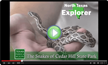 Texas Parks and Wildlife North Texas Explorer at Cedar Hill State Park