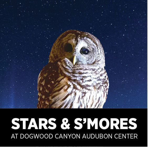 stars and smores