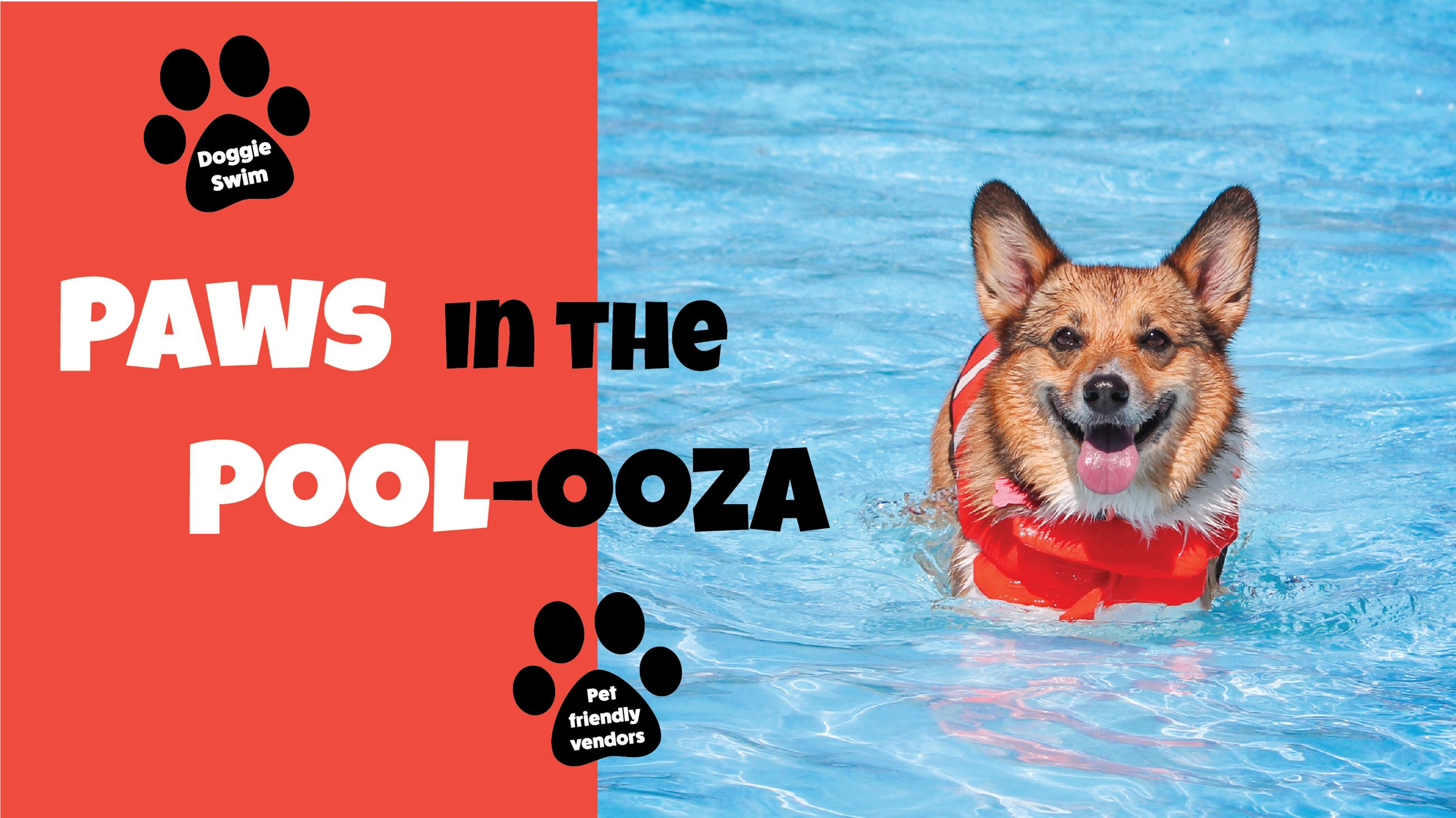Paws in the Poolooza