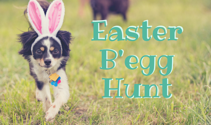 easter-begg-hunt