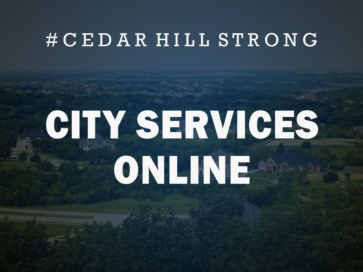 CHS-City Services